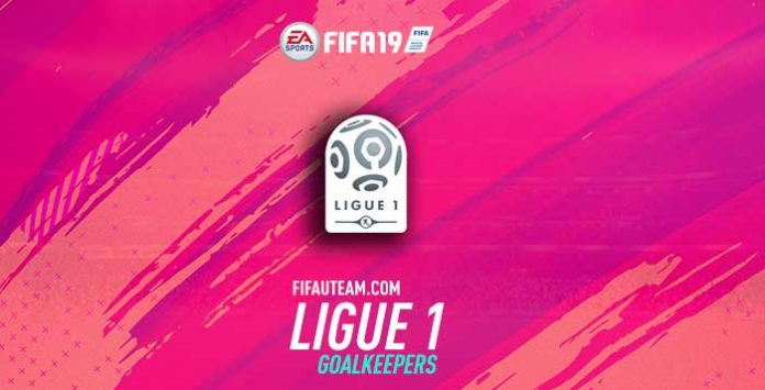 FIFA 19 Ligue 1 Goalkeepers Guide